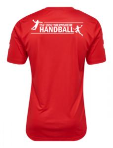 Schriftzug Handball